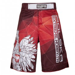 Spodenki Grappling POLSKA red do MMA